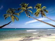 Beautiful Beaches Of The World HQ Wallpapers 1f22a7108500707