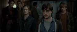 Harry Potter i Insygnia ¶mierci: Czê¶æ I / Harry Potter And The Deathly Hallows: Part I (2010)  DUBPL.BRRip.XviD.AC3-STF |Dubbing PL +rmvb