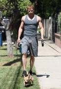 Kellan Lutz walking the dogs - July 15th, 2010 Ec502788773506